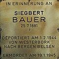 Erinnerungsstein für Siegbert Bauer.jpg