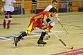 España vs Francia - 2014 CERH European Championship - 03.jpg