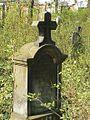 Evangelický hřbitov ve Strašnicích 78.jpg