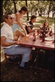 FAMILY ENJOYS A FOURTH OF JULY HOLIDAY IN A PARK AT SLEEPY EYE, MINNESOTA, WHICH IS 12 MILES WEST OF NEW ULM. BROWN... - NARA - 558188.tif