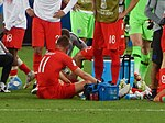 FWC 2018 - Round of 16 - COL v ENG - Photo 074.jpg