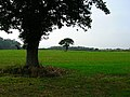 Farmland near Berwick Station - geograph.org.uk - 62640.jpg