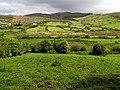 Farmland near Dromore - geograph.org.uk - 14848.jpg