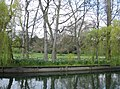 Fellows' Garden - Magdalene College - geograph.org.uk - 783973.jpg