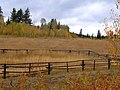 Fence - panoramio (1).jpg