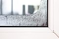 Fenster mit Kondenswasser.jpg