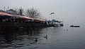 Feria Fluvial de Valdivia, desde el río en invierno.JPG