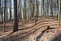 Festung Rosenberg - Ehemalige Erdwerke - 1 - 2014-03.jpg