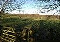 Field, Abham - geograph.org.uk - 1074123.jpg