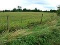 Field near Duntisbourne Abbots - geograph.org.uk - 925927.jpg