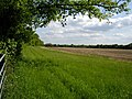 Field to the west of Furzedown Road - geograph.org.uk - 178274.jpg
