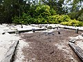 Figure 14- Doctors' Cemetery (Property No. S-4), Midway Atoll, Sand Island (April 14, 2015) (26027781021).jpg