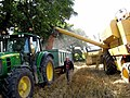 Filling the grain trailer - geograph.org.uk - 942470.jpg