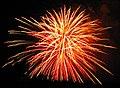 Fireworks (2 July 2017) (Heath, Ohio, USA) 9 (35539106512).jpg