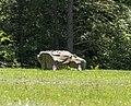 Flight 93 impact site marker PA1.jpg