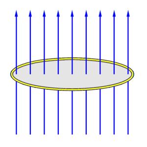 Explosively pumped flux compression generator - Fig. 1: Original magnetic field lines.
