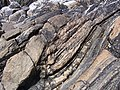 Folded rocks at Huisinis beach - geograph.org.uk - 1343209.jpg