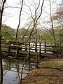 Footbridge at the eastern end of Heath Lake - geograph.org.uk - 773404.jpg