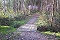 Footbridge near Marshleyharbour Wood - geograph.org.uk - 1610364.jpg