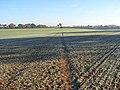 Footpath, Harpsden - geograph.org.uk - 616892.jpg