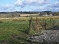 Footpath, Tincleton - geograph.org.uk - 1179519.jpg