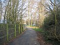 Footpath and trees - geograph.org.uk - 723114.jpg