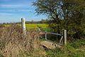 Footpath from Spring Lane - geograph.org.uk - 390569.jpg