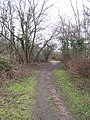 Footpath on Tadley Common - geograph.org.uk - 1711860.jpg