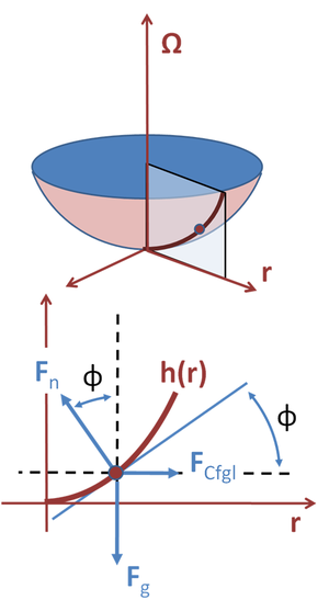 Bucket argument - Force diagram for an element of water surface in co-rotating frame. Top: Radial section and selected point on water surface; the water, the co-rotating frame, and the radial section share a constant angular rate of rotation given by the vector Ω. Bottom: Force diagram at selected point on surface. The slope of the surface adjusts to make all three forces sum to zero.