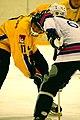 Four-Nation Hockey Tournament 9 (4397137245).jpg