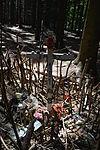 Foxholes - Bois Jacques - Bastogne - 08.jpg
