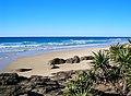 Fraser Island a04 indian head.jpg