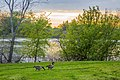 Fredrick Miller Regional Park, Sacramento River (25721928220).jpg