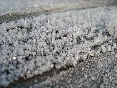 Frost Dec-2008 SL271906.JPG