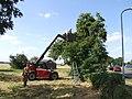 Fruit Pickers, Fishtoft - geograph.org.uk - 557764.jpg