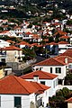 Funchal Rooftops.jpg