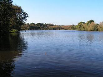 River Teise - Furnace pond.
