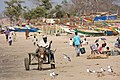 Gambia beach.jpg
