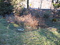 Garden before spring cleaning 002.JPG