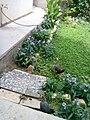 Gardens in Baghdad 67.jpg