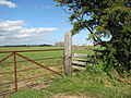 Gate into a cattle pasture - geograph.org.uk - 1467428.jpg