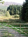 Gate leading down to pond - geograph.org.uk - 48886.jpg