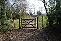 Gate on the bridleway, Green Wood - geograph.org.uk - 1252935.jpg