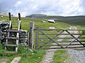 Gateway to the open fell and Ingleborough - geograph.org.uk - 863436.jpg