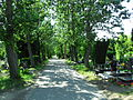 Gdańsk Cmentarz Łostowicki.JPG