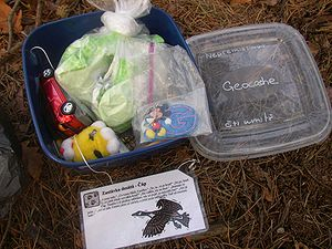 'Screen Time With Green Time' – Geocaching In Truxtun Park