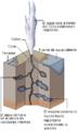 Geyser diagram lmb.png