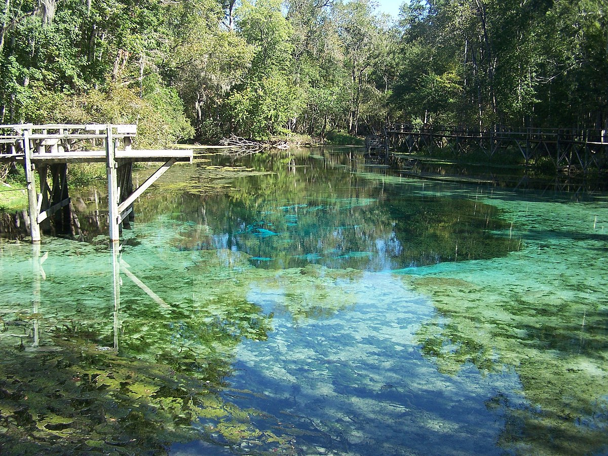 Picture of Blue Springs State Park