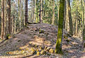 Gipfelkreuz Kalkrieser-Berg (Schmittenhöhe).jpg