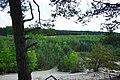 Gmina Dębe Wielkie, Poland - panoramio.jpg